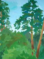Pines by Taski-Guru