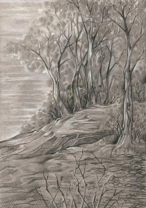 Grove Pass by Taski-Guru