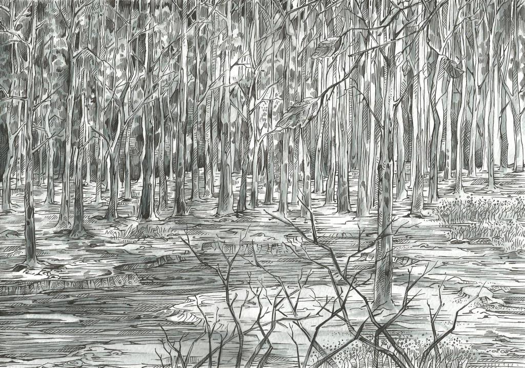 Gloomy Pinery by Taski-Guru