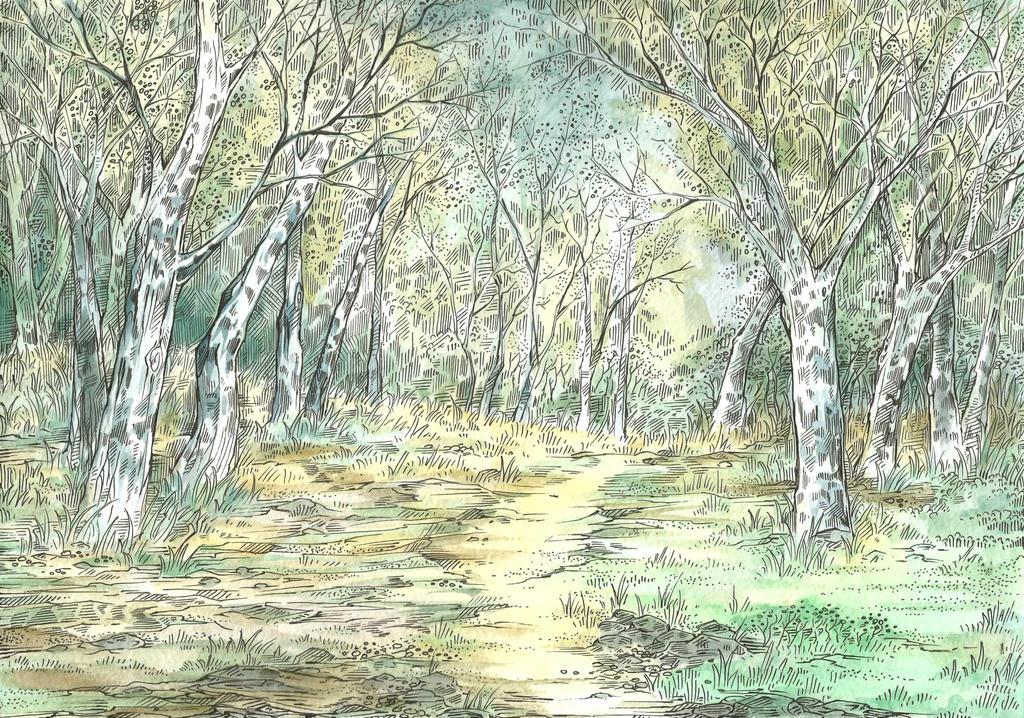 Poplars by Taski-Guru