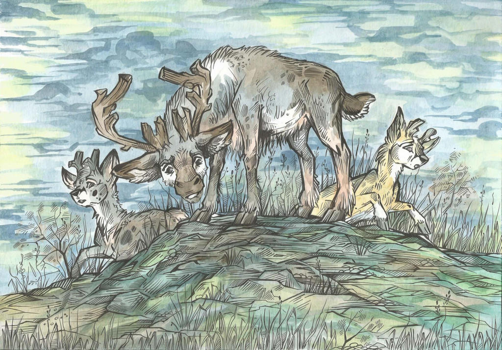 Caribou Family by Taski-Guru