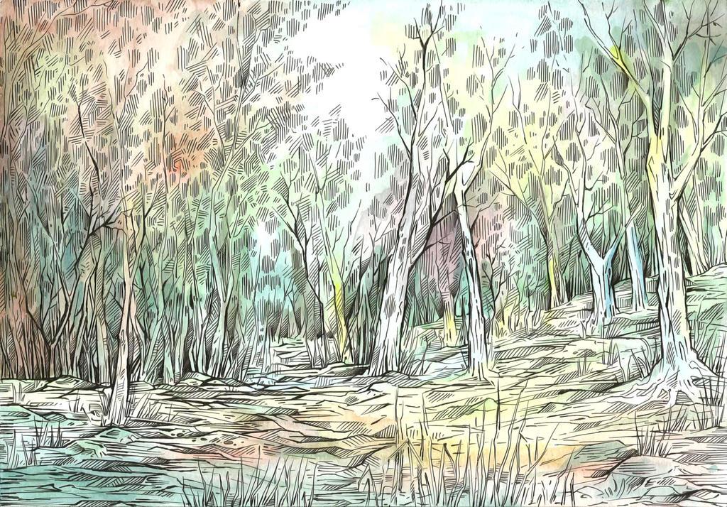 Bare Trees by Taski-Guru