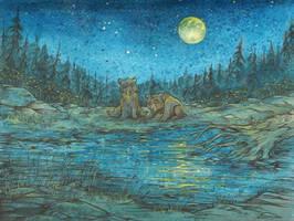 Lake of stars by Taski-Guru