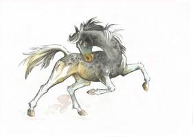 Horse Adopt #5 (only 6$) [SOLD] by Taski-Guru