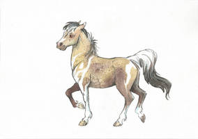 Ambler Horse Adopt #6 (only 6$) [SOLD] by Taski-Guru