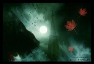 - Leaving Shadowland -