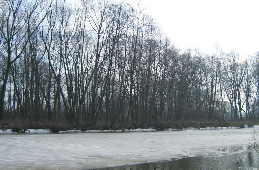 Rzeka 3