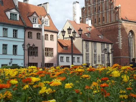 Riga's Old Town View