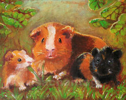 Guinea pigs in the mist by Risachantag
