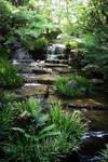 Photography: Koukoen waterfall