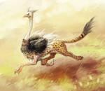 Ostrich Griffin