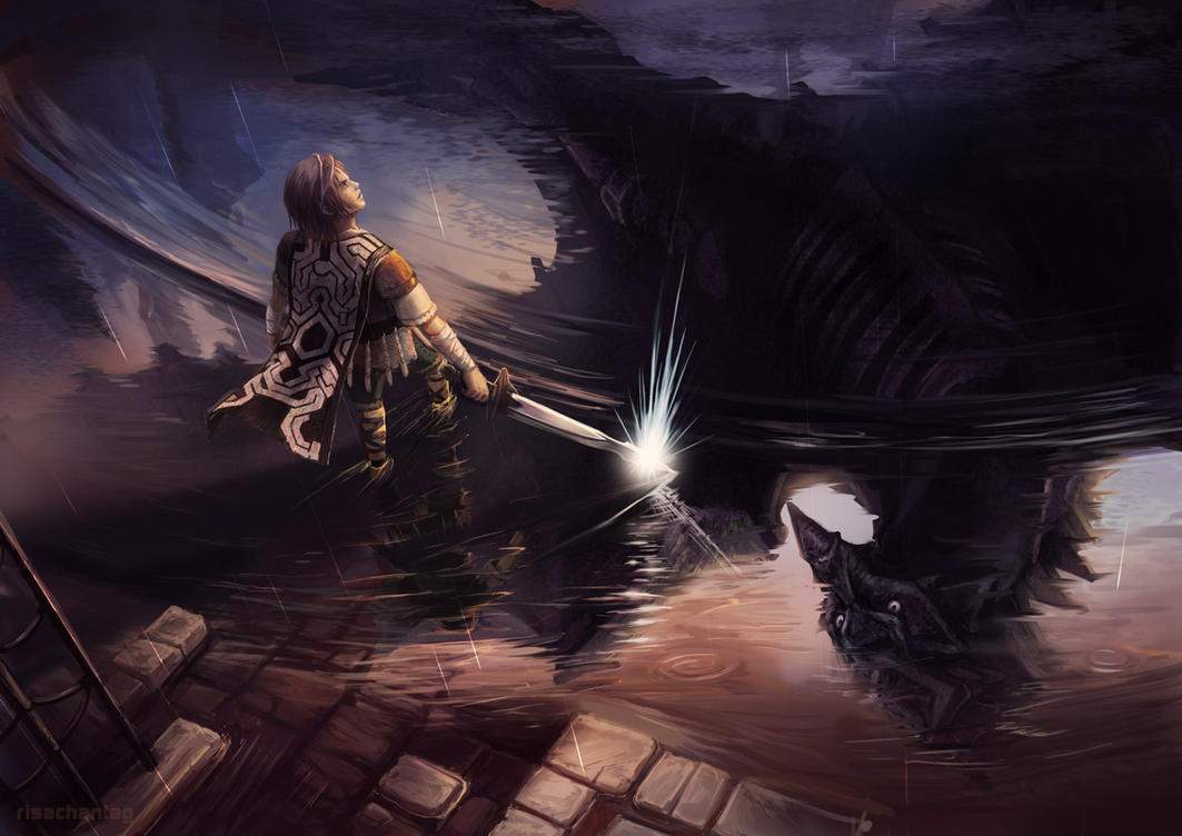 Shadow of the Colossus: Avian Reflection by Risachantag on ...
