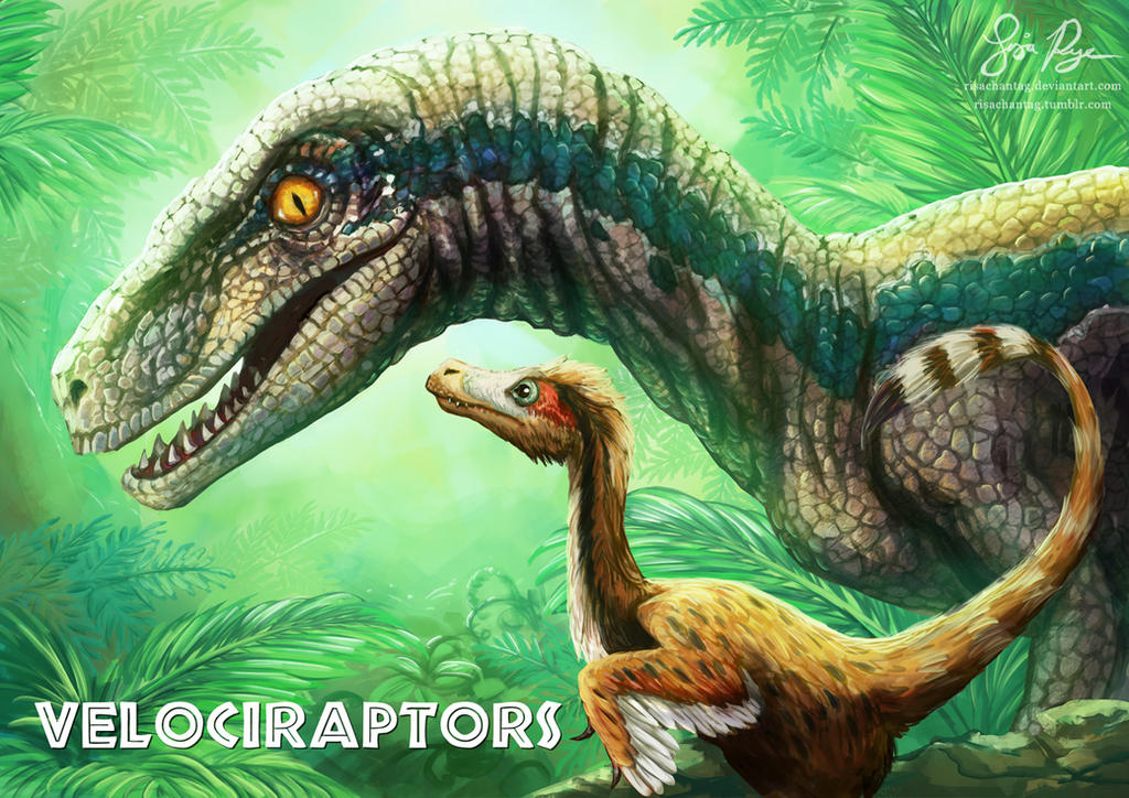Velociraptors by risachantag on deviantart - Raptor dinosaure ...