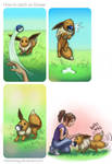 How to catch an Eevee