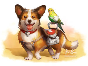 First Aid Pup