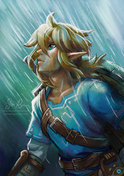 Breath of the Wild: Rain
