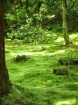 Japan: Sanzen-in Spirits
