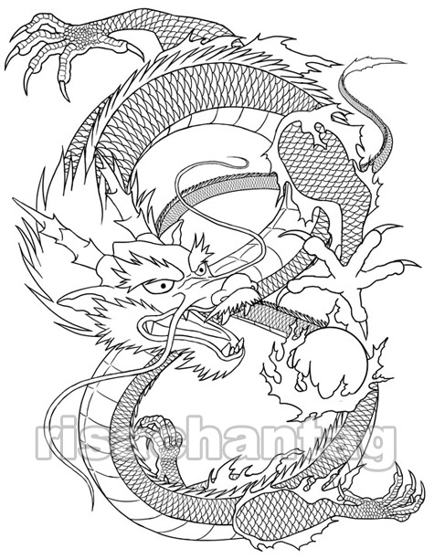 Dragon tattoos are very adaptable and flexible body art looks great and the