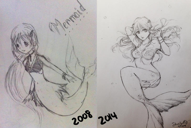 Improvement Meme 2008 to 2014 by S-hui