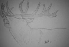 Cerf by LoiseFenollCreation