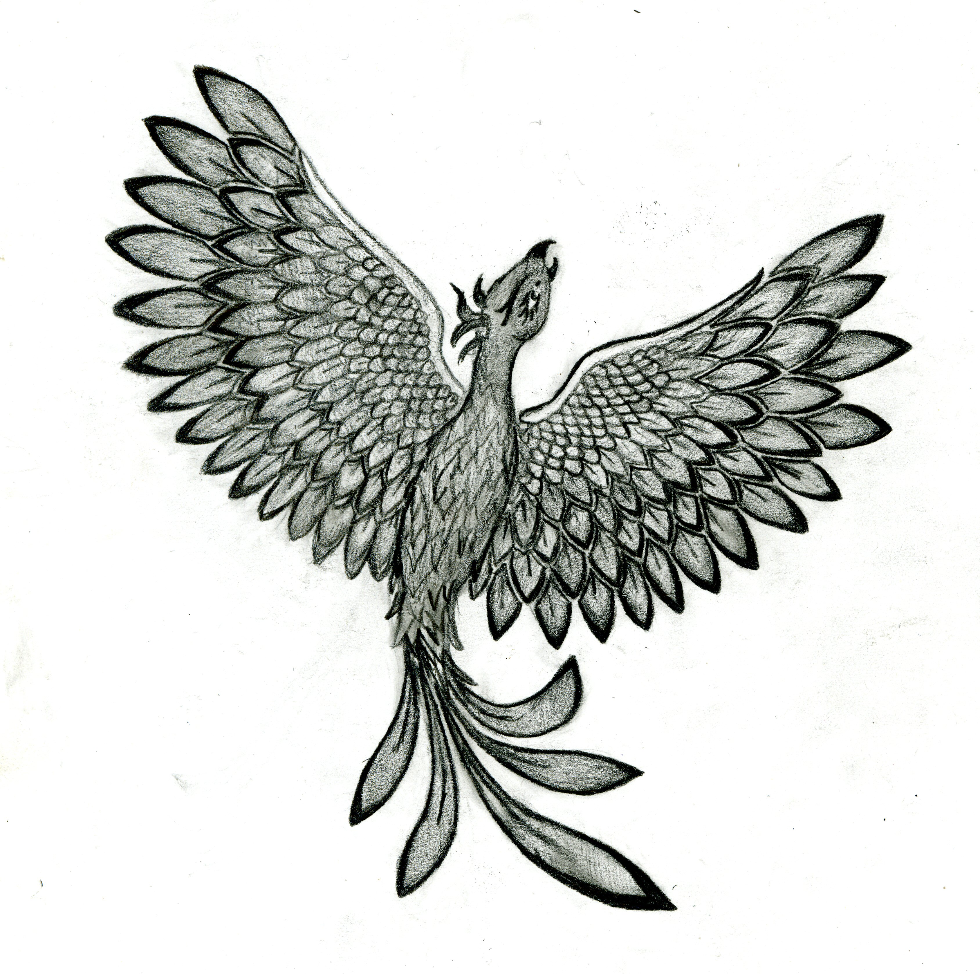 Phoenix tattoo by