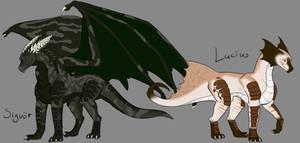Dragonettes