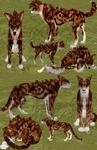 Feline or Canine? - Preset Adopt CLOSED
