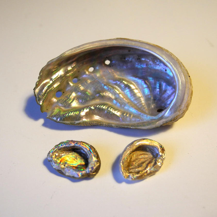 Abalone pendants by asa baijan on deviantart abalone pendants by asa baijan mozeypictures Image collections