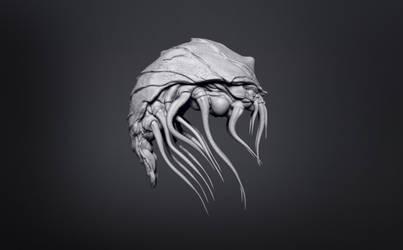 somekind of aquatic creeeeeeeature