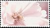 Flower stamp 1 by rarebeestjes