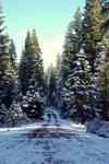 Winter Path by 07buck