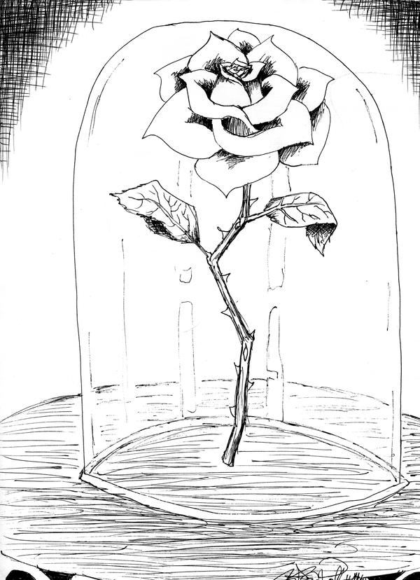 Beauty And The Beast Rose By KCJoker33 On DeviantArt