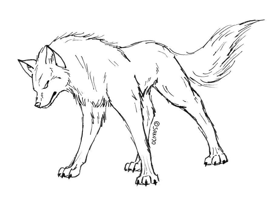 Simple Wolf Lineart : Simple snarling wolf drawing