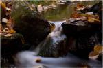 Autumn Flow by LushChiller