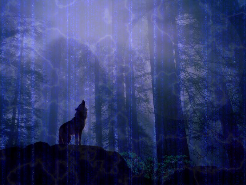 wolf abstract by finalrobo101 on deviantart