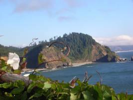 Oregon coast by jcho