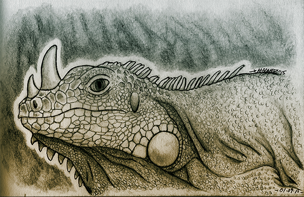 RhinoGuana by Insanemoe