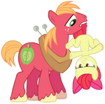 Stop there Apple Bloom!!