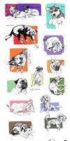 Pet sketches 3