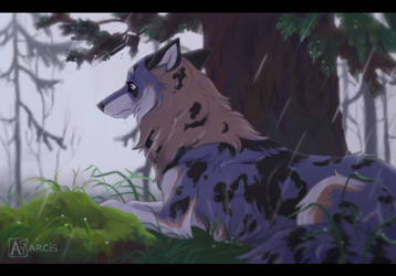 Commission: At the edge of rainy forest