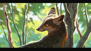 Commission: FauxHawkFox 1