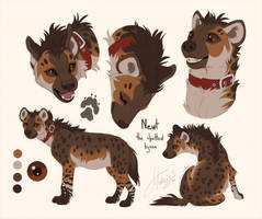 Newt reference sheet