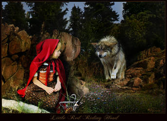 Little Red Riding Hood by Drezdany
