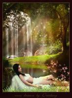 some dreams by Drezdany