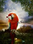 parrot in love