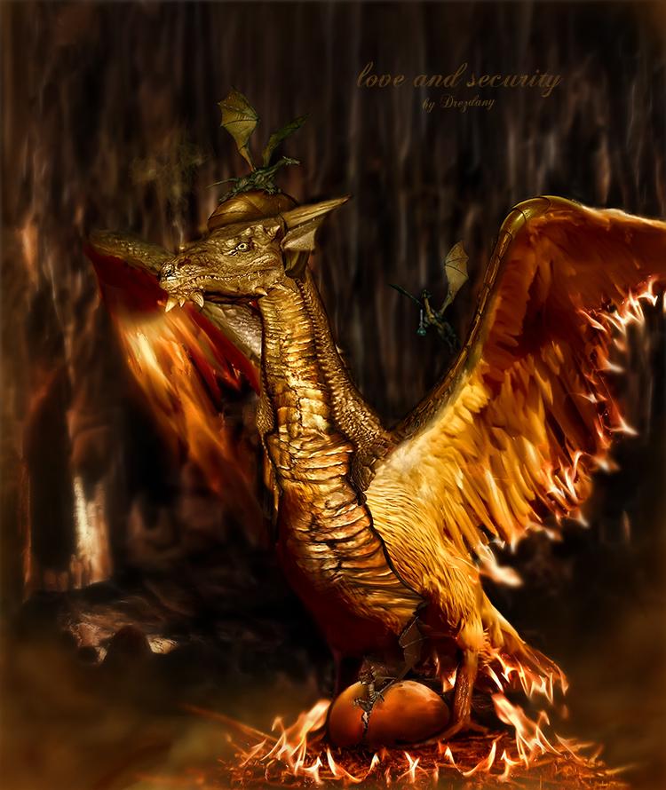 http://fc05.deviantart.net/fs44/f/2009/132/f/f/Short_tail_Fire_Dragon_by_Drezdany.jpg