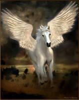 Pegasus by Drezdany