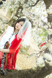 Flower Field by adrian-airya
