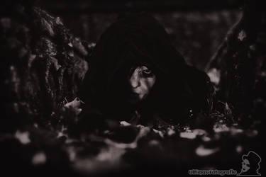 Sopor Aeternus by Ultimax-Photography