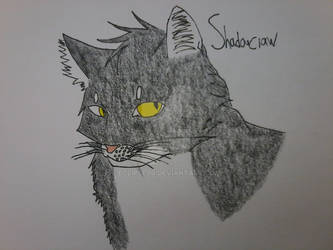 Shadowclaw Headshot
